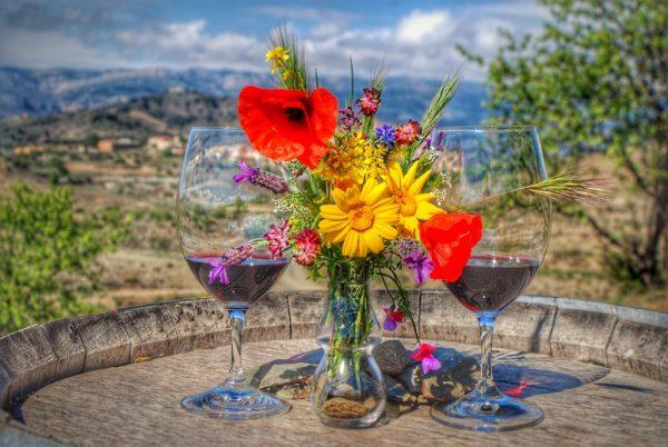 cata de vinos gratallops