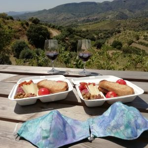 wine and food pairing priorat