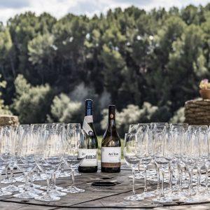 tast de vins biodinamics penedes