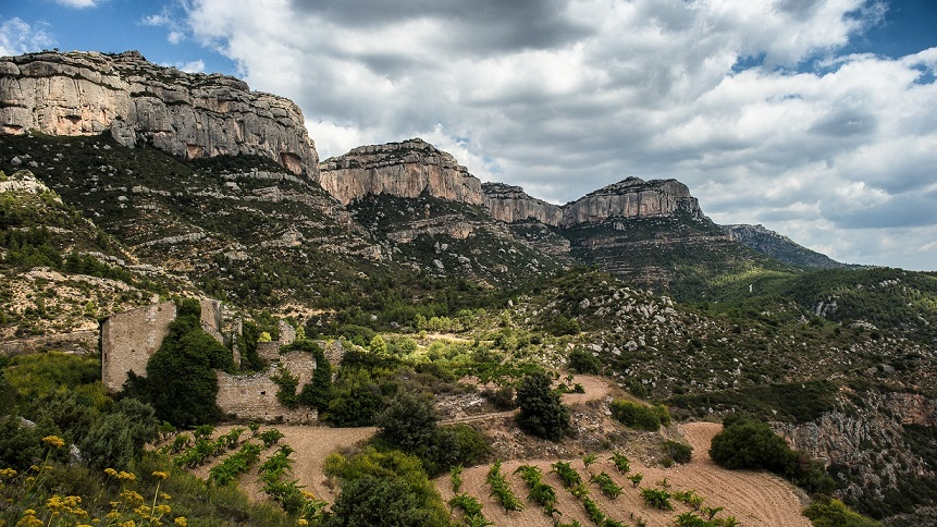 priorat region what to do and what to see