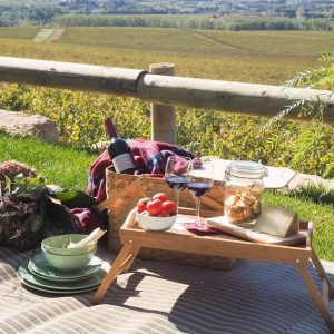 picnic among penedes vineyards