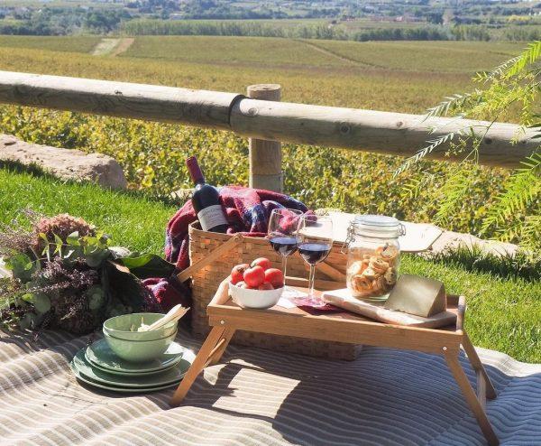 picnic entre viñedos del penedes